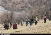 درختکاری در منطقه ده آفتاب یاسوج