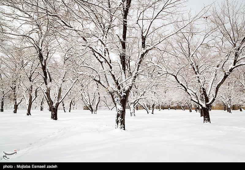 پیشبینی بارش 15 سانتیمتری برف در ارومیه