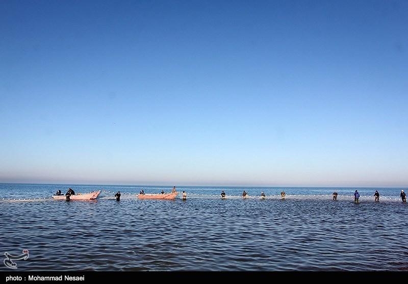 عکس هايي از ميانکاله مازندران