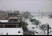 سوریه / برف/1