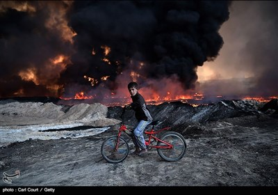 تقریر مصور لأهم أحداث عام 2016