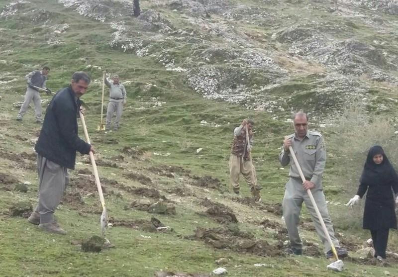 طرح جنگلانه در مناطق حفاظت شده شهرستان کهگیلویه اجرا میشود