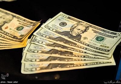 فروش دلار 4200 تومانی به مسافران در شعب بانک ملی آغاز شد