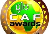 جایزه بازیکن سال آفریقا
