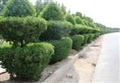 مقاومسازی و جابهجایی روستاها از برنامههایبنیاد مسکن استان خوزستان است