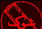 نسرین مقانلو و حمید حامی«شوک»را روایت می کنند