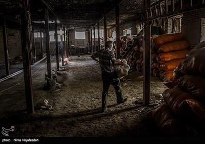 ایران کے شہر مشہد میں ہاتھ کتائی کا قدیم ہنر
