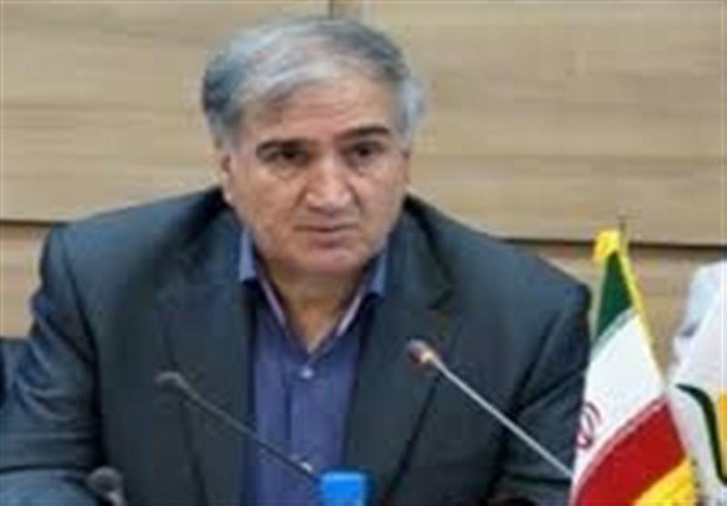 40 میلیون دلار محصولات ارگانیک ایران صادر شد