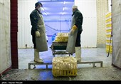 Iranian Health Official Rejects Rumors about Bird Flu Deaths