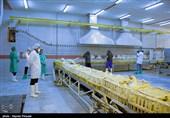 بازدید از کشتارگاه مرغ ها در خصوص آنفولانزای مرغی- سنندج