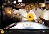 فروش ماهی تن