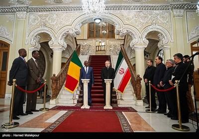رئیس مجلس الشورى الإسلامی یستقبل نظیره المالی
