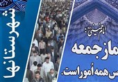 تهران| وزارت امور خارجه از حق شیعیان مظلوم نیجریه در مجامع بینالمللی دفاع کند