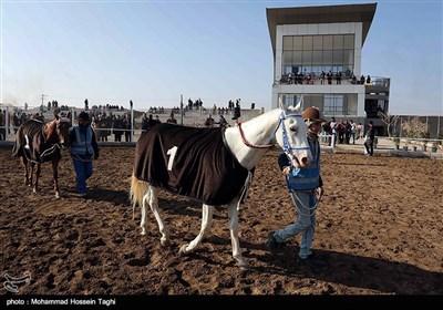مسابقات کورس اسب دوانی قهرمانی کشور - مشهد