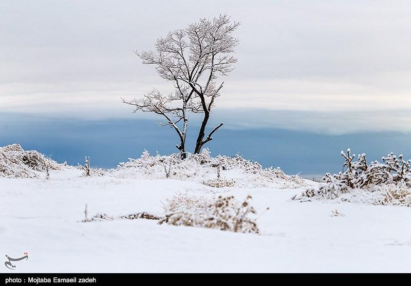 ۸ استان کشور سفیدپوش میشود