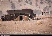 جادههای تردد عشایر کرمان تا 15 اردیبهشتماه بازگشایی میشوند