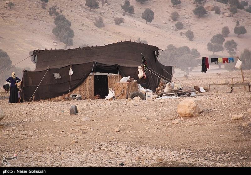 1000 خانوار عشایر استان کرمانشاه در مناطق قشلاقی استانهای ایلام و خوزستان مستقر هستند