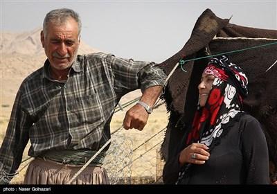 العشائر الرحل فی ایلام غربی ایران