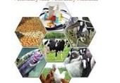 صادرات تولیدات داروی دامی استان سمنان توسعه مییابد