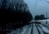 فیلم/عبور پرالتهاب گوزنها از مقابل قطار در حال حرکت
