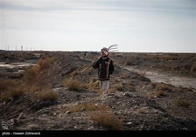 اهالی روستای مرزی تپه کنیز اغلب به دامپروری مشغول هستند مشکل عمده آنان بجز خشک سالی عدم اجازه بی دردسر ورود به خاک افغانستان برای چرای دام هایشان است ، در خاک افغانستان مرتع های خوبی برای چرای دام وجود دارد