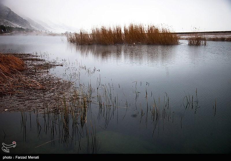 https://newsmedia.tasnimnews.com/Tasnim/Uploaded/Image/1395/11/13/139511131549163609872734.jpg