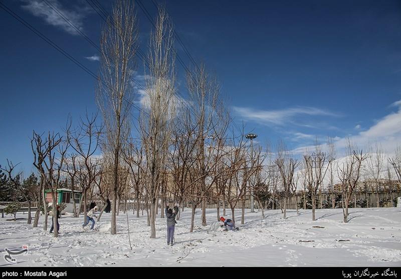 رقص برف در آسمان آلوده تهران