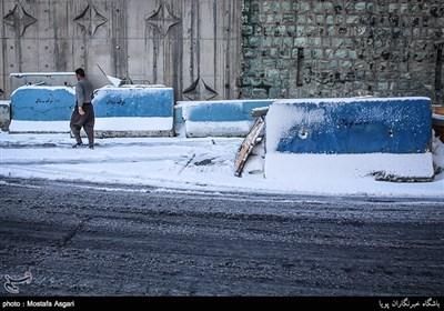 طهران تکتسی بالبیاض