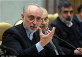 Iran's Nuclear Chief in Vienna for IAEA Conference