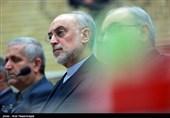 صالحی: برجام منتفی شود ضرب شستی برای دشمنان خواهیم داشت/ایران تنها کشوری که غنی سازی آن به تأیید سازمان ملل رسیده