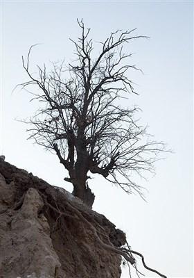 13951123224818159984243 رانش زمین و ریزش کوه در لرستان + تصاویر و جزئیات حادثه