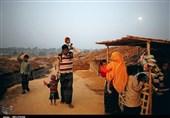 Thousands of Rohingya Flee Myanmar for Bangladesh: Report