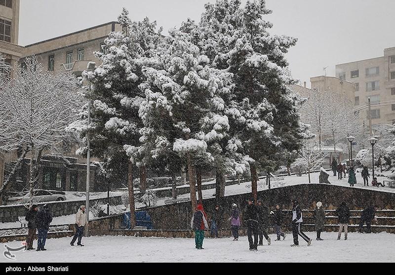 https://newsmedia.tasnimnews.com/Tasnim/Uploaded/Image/1395/11/25/1395112522225341610002704.jpg