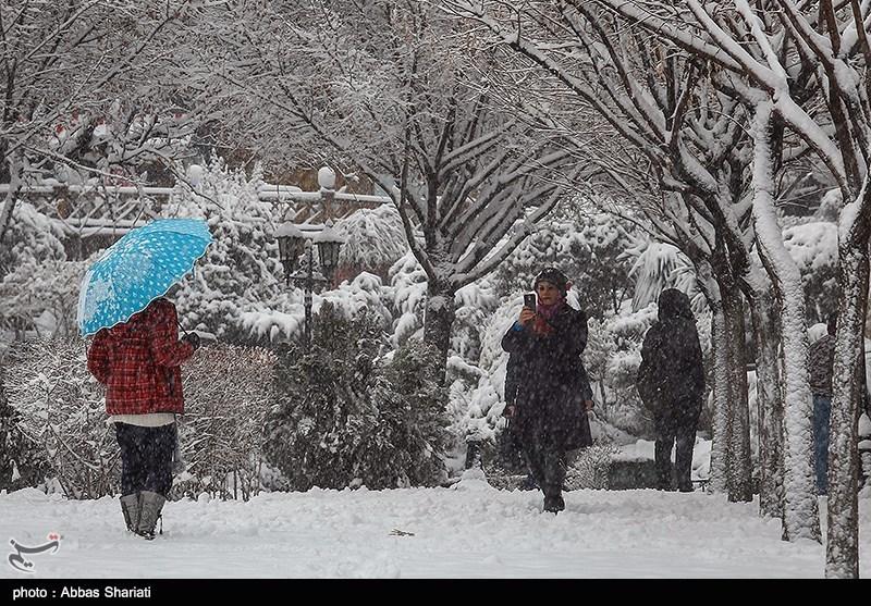 https://newsmedia.tasnimnews.com/Tasnim/Uploaded/Image/1395/11/25/1395112522225355710002704.jpg