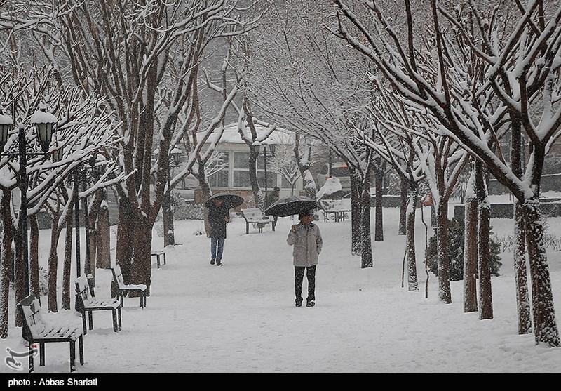 https://newsmedia.tasnimnews.com/Tasnim/Uploaded/Image/1395/11/25/1395112522225368210002704.jpg