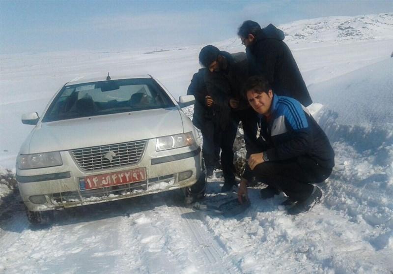 بدرقه برف اردبیل با یخبندان و سردی هوا/300 راس گوسفند بر اثر وقوع بهمن در خلخال تلف شد