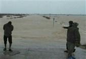 امدادرسانی به 4780 سیلزده استان بوشهر و اسکان اضطراری 544 خانوار/توزیع اقلام امدادی میان سیلزدگان+ تصاویر