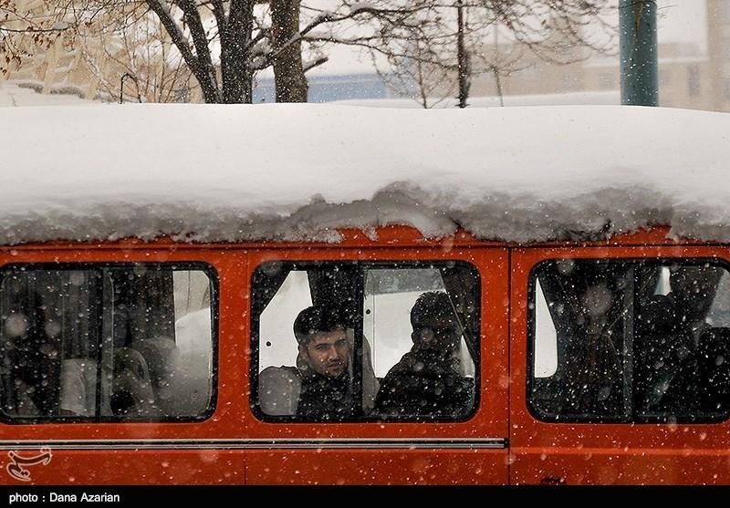 بارش برف در مریوان