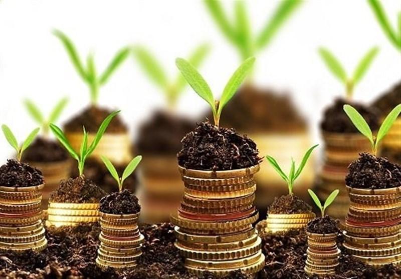 سرمایهگذاری 100 میلیارد تومانی یک بانک در شرکتهای دانشبنیان