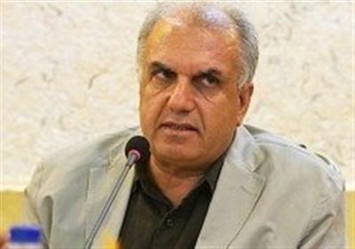 موسایی: دعوت از ناشران معتبر آلمان و فرانسه برای حضور در نمایشگاه کتاب تهران