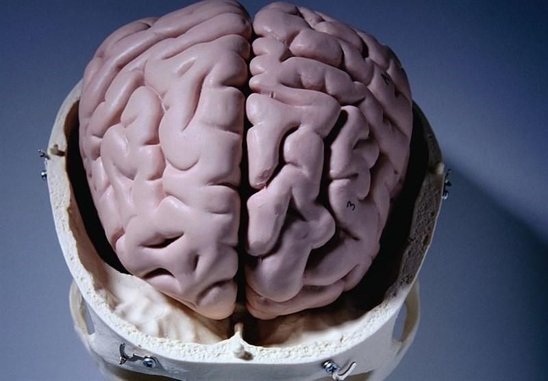 مغز انسان به طور طبیعی قند تولید میکند