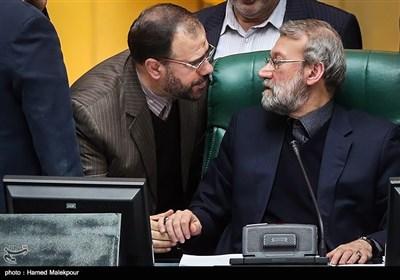گفتوگوی علی لاریجانی رئیس مجلس شورای اسلامی با حسینعلی امیری معاون پارلمانی رئیس جمهور