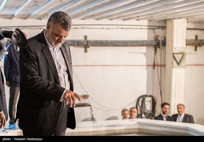وزیر جهاد کشاورزی در دامغان: ارز 4200 تومانی برای واردات نهادههای دامی تأمین شده است