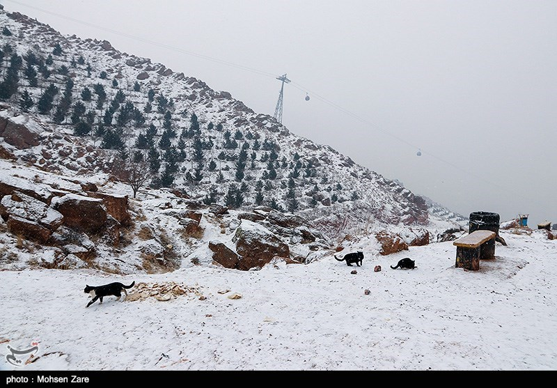 Eynali Mountain, A Favorite Site in Tabriz - Tourism news