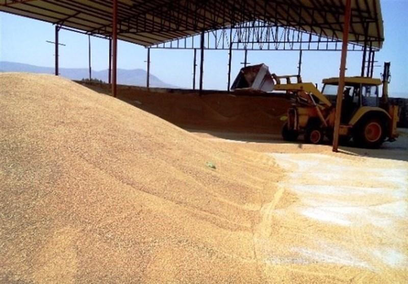 سیلوی ذخیره گندم شهرستان سلسله پس از 10 سال توقف احداث میشود
