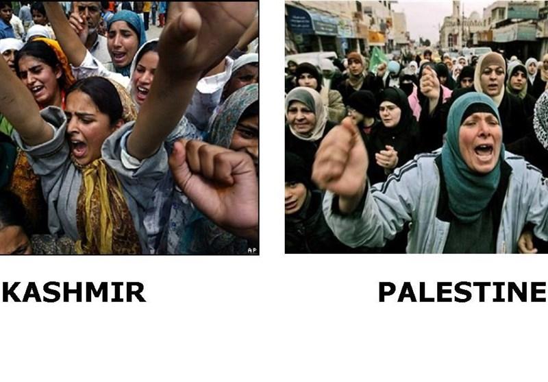 کشمیر و فلسطین