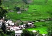 ظرفیت گردشگری استان گیلان به کمتر از 30 درصد رسیده است