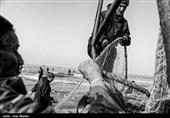 ماهیگیری در بندرانزلی