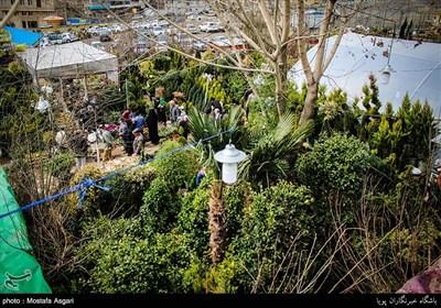سوق الورود على اعتاب عید النوروز