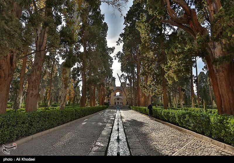 درختان دیرزیست باغ فین کاشان به صورت ویژه حفاظت میشود